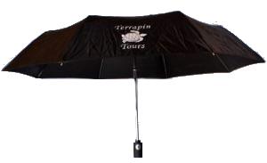 umbrella-300x183