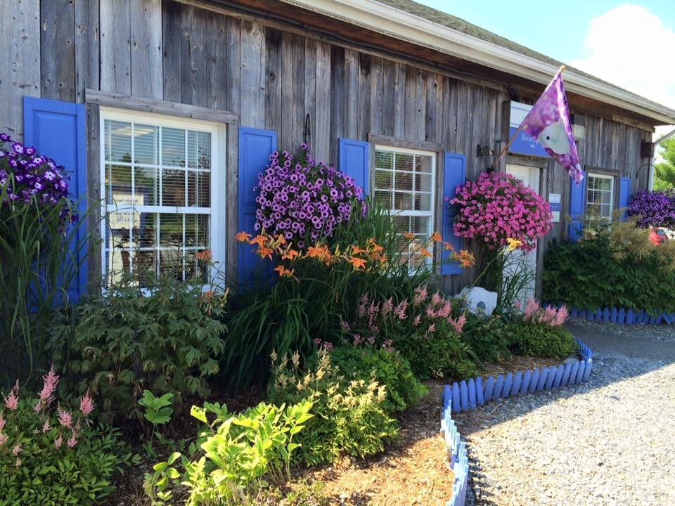 Lakes Lavender In Quebecs Eastern Townships Terrapin Tours - 7 things to see and do in quebecs eastern townships