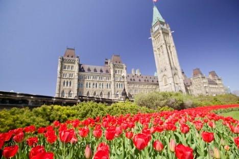 Ottawa1