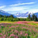 Alaska_Cruise2