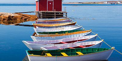 Newfoundland_main